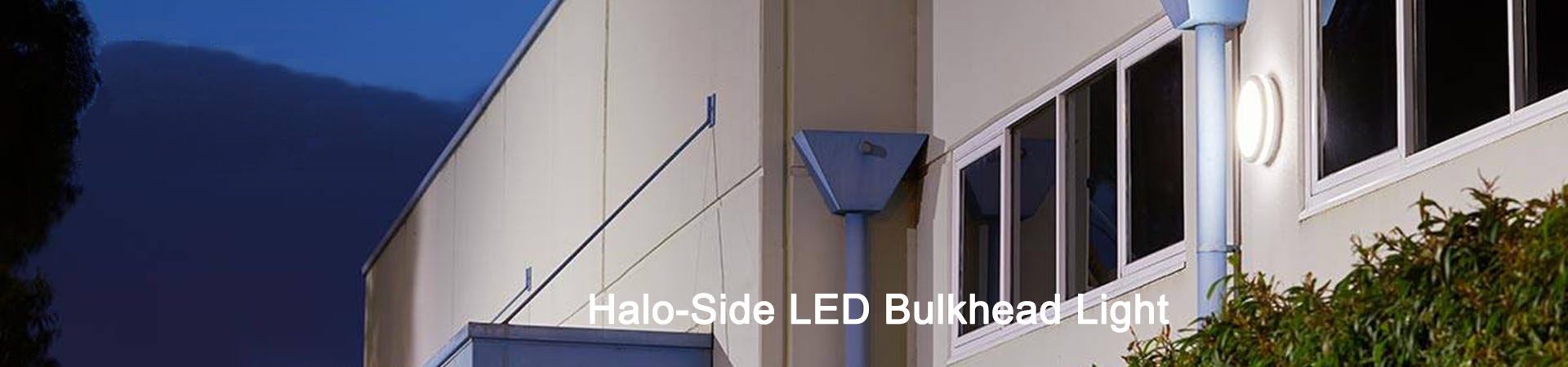 Halo Side LED Bulkhead Lighting