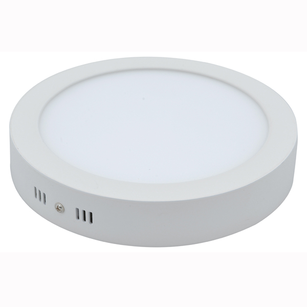 Flush Mounted LED Ceiling Light 12W