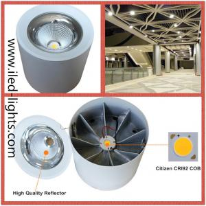 Dimmable DALI 0-10V 12W Surface Mounted Round LED COB Downlight
