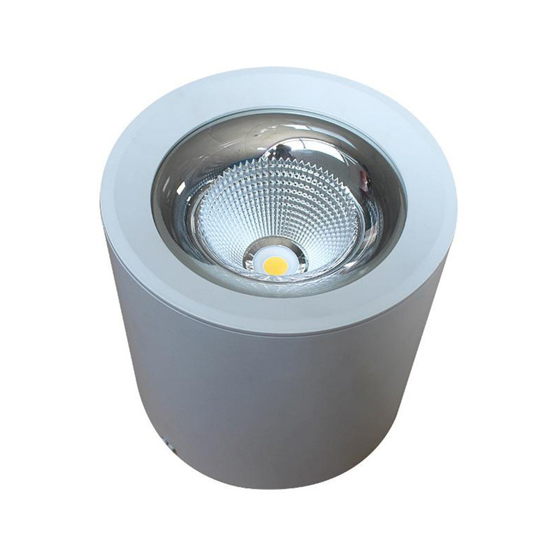 0-10V Dimmable DALI Emergency 36W Surface Mounted LED Downlight