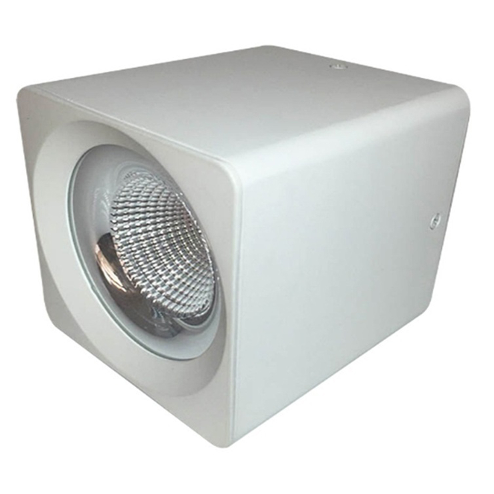Square Emergency 18W 5 inch Surface Mounted LED COB Downlight