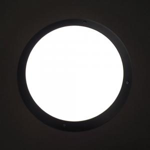 Lighting 10W Bulkhead Light
